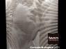cersaie-bolognia-terra-ceramica-mosaico-lineal