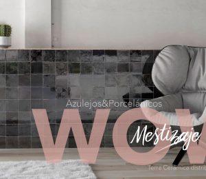 wow-mestizaje2